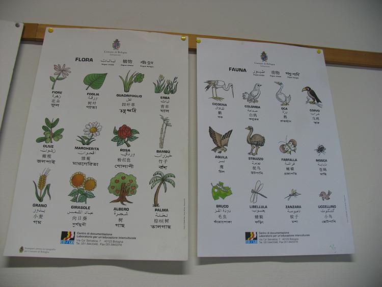 Asilo nido - La Giostra