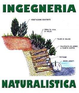 Tecniche Ingegneria Naturalistica.Portalegiovani Comune Di Firenze